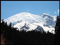 Climb of Mount Rainier: Mount Rainier seen from Glacier Basin trail